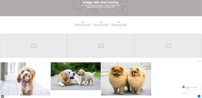 Example of an image gallery on Shopify