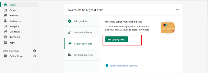 set payment methods for shopify