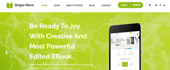 single store single page shopify theme