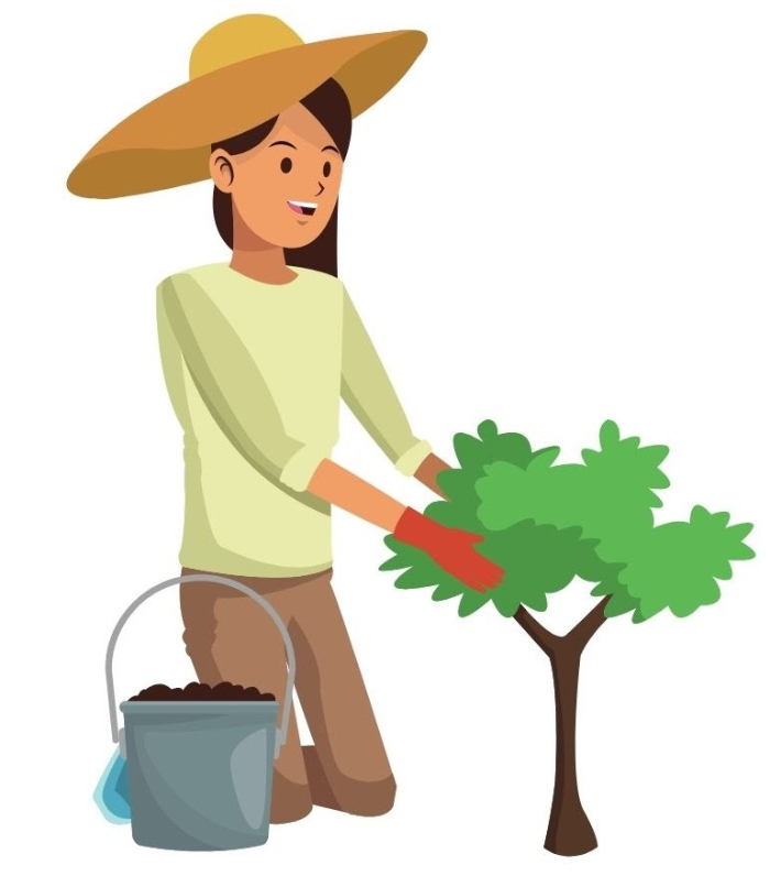 do high ticket dropshipping in yard and gardening niche
